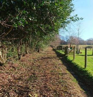Photo of the Church Walk path