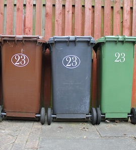 Dorset Council bin collection