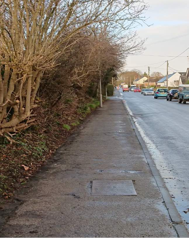 Photo of cleared path on Wareham Road