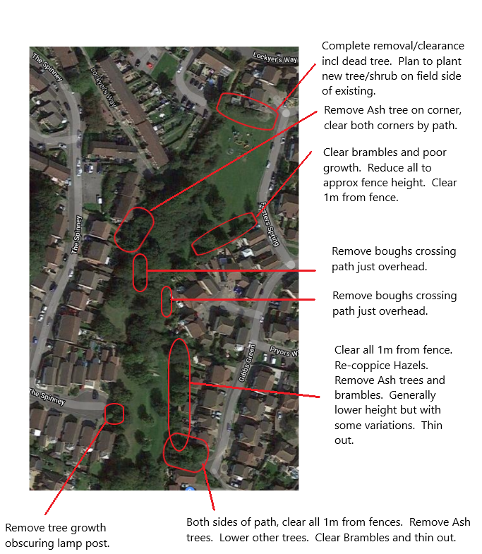 Image of Foxhills open space with details of the tree works